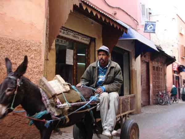 Donkey transport. Marrakeech 2004