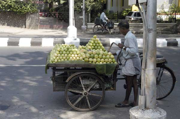 Chennai India 2008