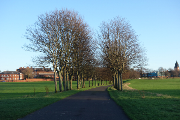 Wavertree Park 2016