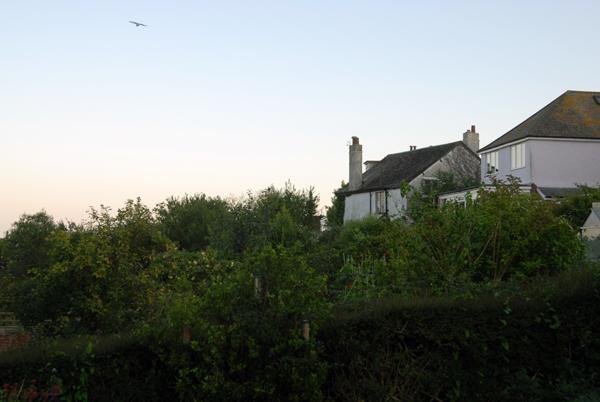 Lyme Regis 2005