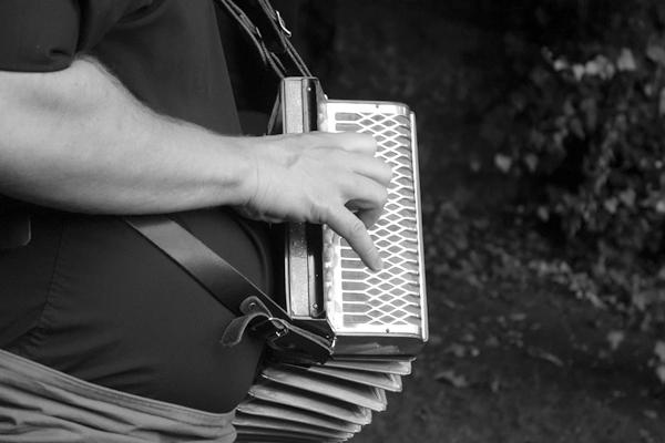 Music in the Nags Head garden. Shrewsbury 2016
