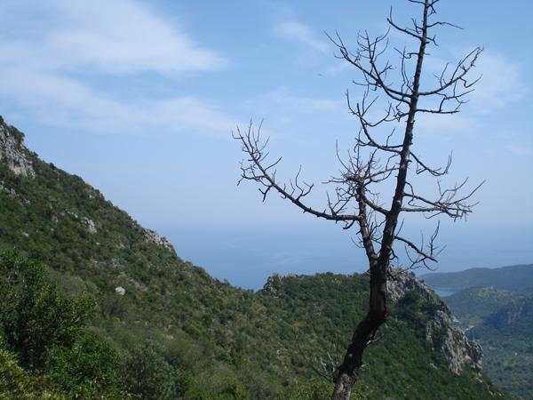 Kyparissi, Greece 2009