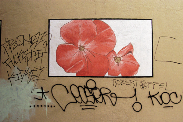 Flower on the wall. New York 2005.