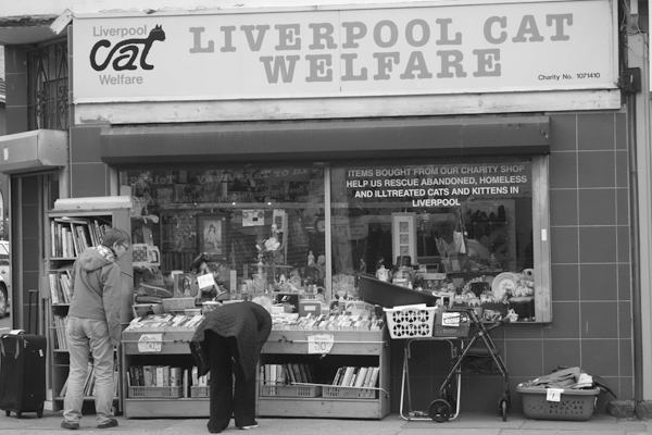 Liverpool Cat Welfare shop. Wavertree High Street. Liverpool 2017.
