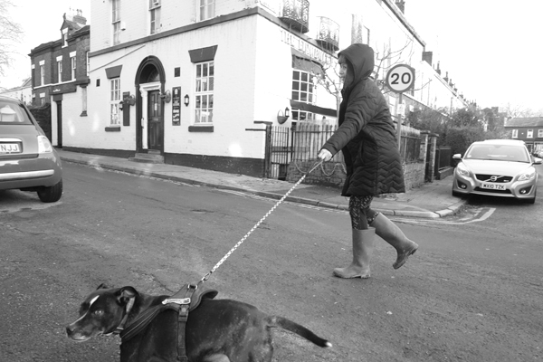Taking the dog for a walk in Sandown Lane. Liverpool, January 2018.