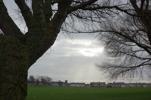 Wavertree Park. Liverpool January 2018.